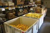 Harvest bins of citrus fruit sit in the Food Bank warehouse aisle between shelved pallets of canned beans, pasta, and other canned and dry goods.