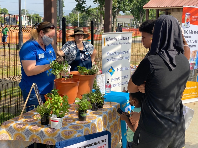 UCCE San Bernardino Master Gardener and Master Food Preserver Programs share their knowledge with community members at the Seeds of Joy garden