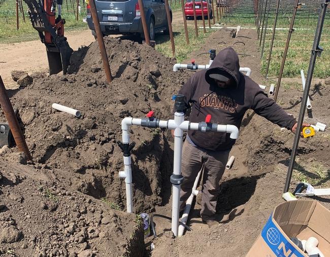 Drip irrigation system installed at a vineyard