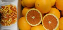 Cara Cara is the variety of navel oranges currently most commonly planted in California. Photo by Beth Grafton-Cardwell for Food Blog Blog