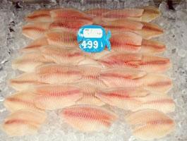 Tilapia fish market.