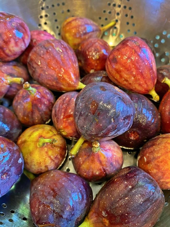 Whole Figs