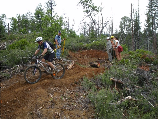 Building and testing a new trail in the Weaverville Community Forest