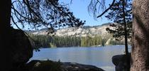 SilverLake for Forest Research and Outreach Blog