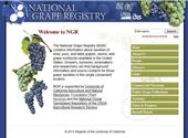 The NGR Main Page