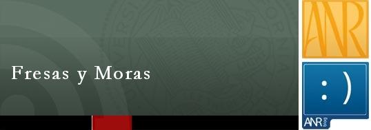 Fresas y Moras - <span style='font-size:0.5em;'>fruta albina</span>