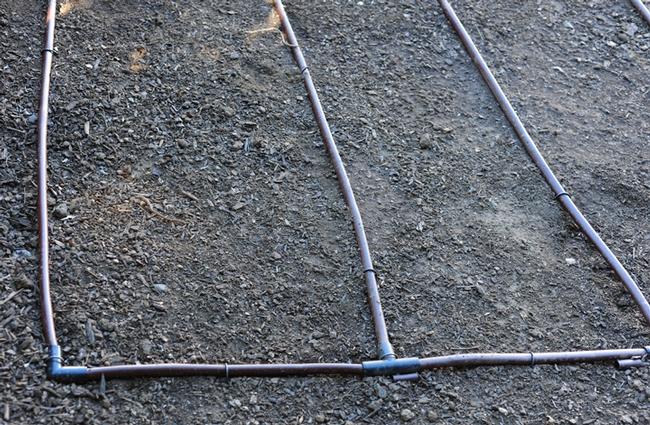 Corners of the drip grid. (Photo by Kathy Keatley Garvey)