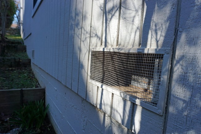 To stop hot embers from drifting into the basement and starting a fire in the home, Wilkin and Johnston installed one-eighth-inch mesh over the vents.