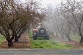 A target-sensing smart sprayer travels between the rows of a Modesto almond orchard.