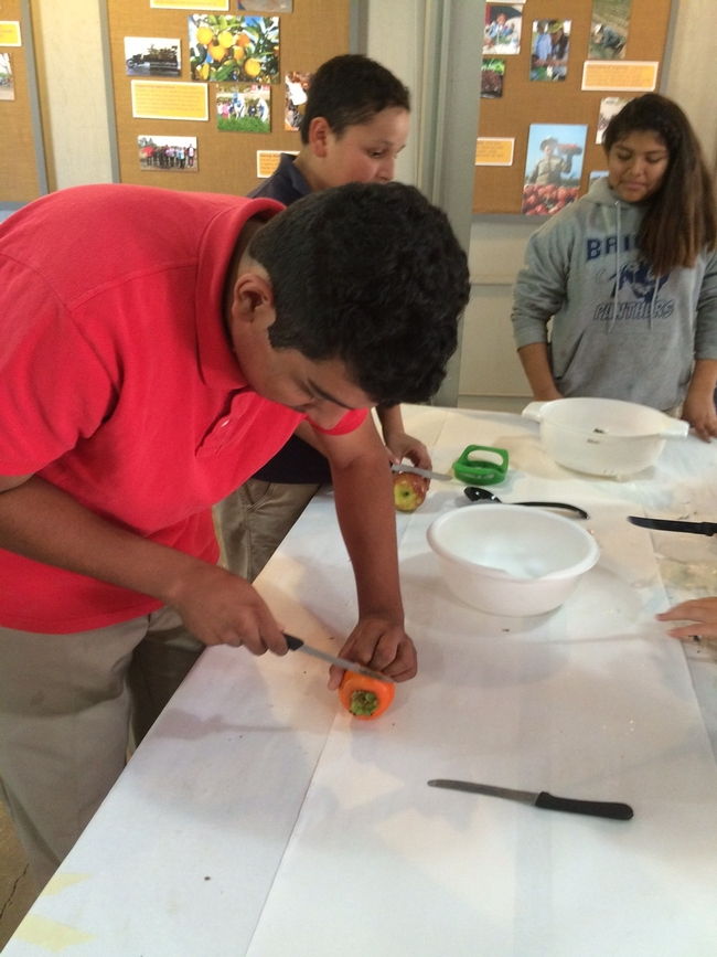 Student teams prepare Perfect Persimmon Salad