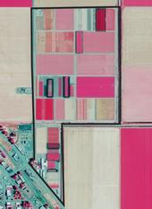Intermountain REC, Tulelake, CA<br/>False Color Composite Image, NAIP 2016