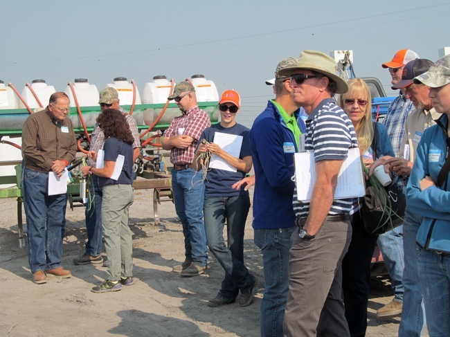2013 IREC Field Day participants learn about onions.