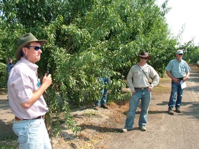 Academic advisors Brent Holtz, David Doll, and Walt Bentley discussing almond cropping systems and IPM at a Fresno County Almond Pest Management Alliance demonstration orchard in 2008.