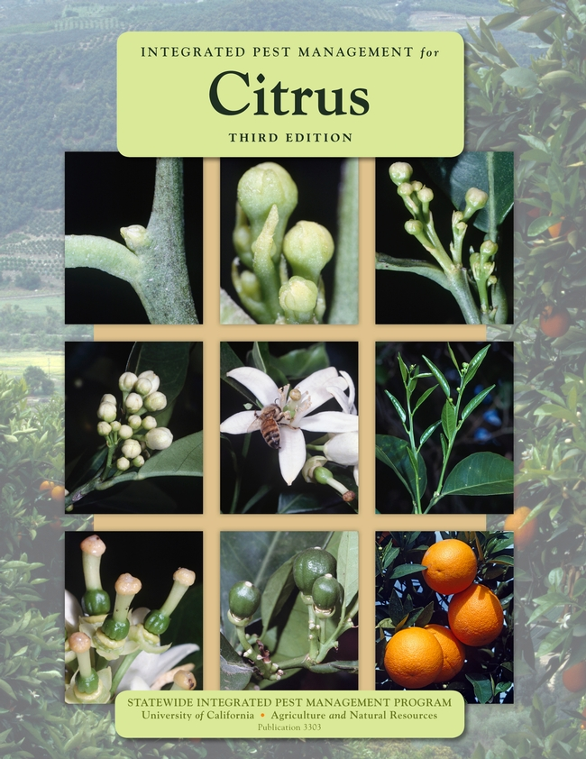 Cover Photo IPM for Citrus