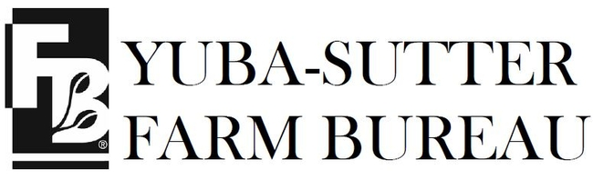 YS logo (4)