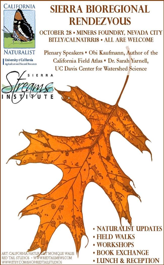 Sierra Bioregional Rendezvous Flyer