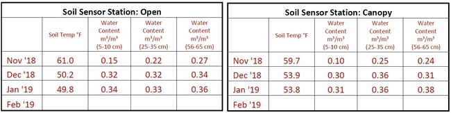 Soil Sensor Station Charts - Open & Canopy