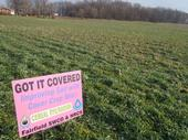 Cover crops (Fairfield Soil and Water)