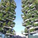 Blog, Vertical gardening (shutterstock.com)   This one is a little tongue-in-cheek!
