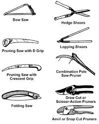 A variety of pruning tools