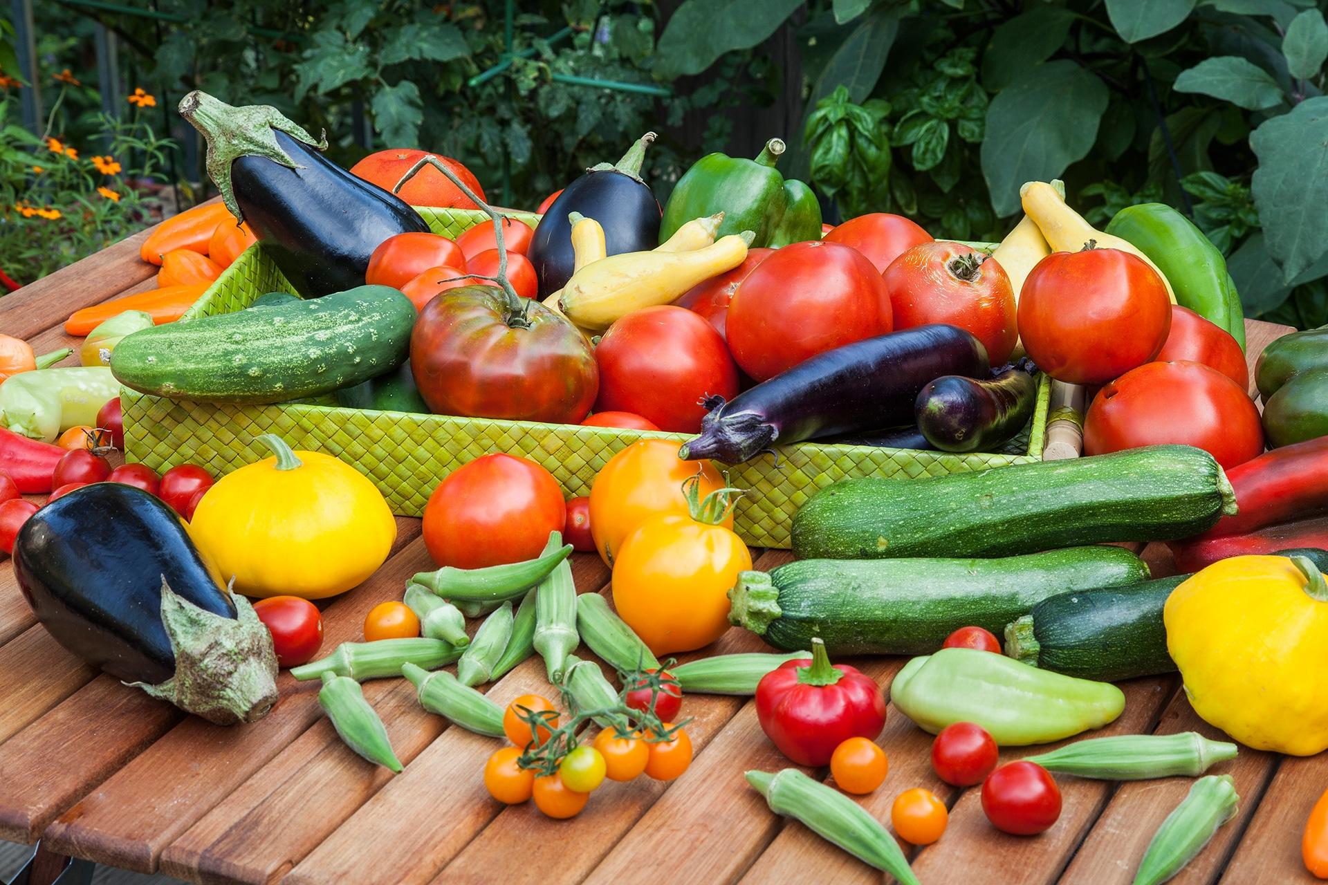 Blog Bountiful Summer Vegetable Harvest