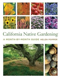 Blog, CA native plant collage