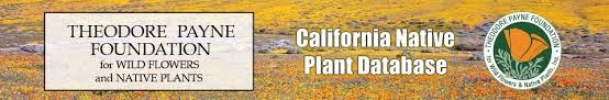 Blog, CA native plant database