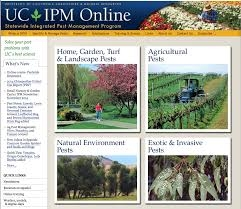 Blog, UC IPM front page
