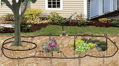 Blog, drip irrigation