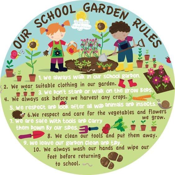 School Gardens Are Vital Napa Master Gardener Column
