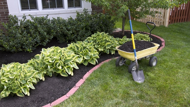 Blog, mulch
