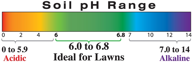 Blog, soil pH