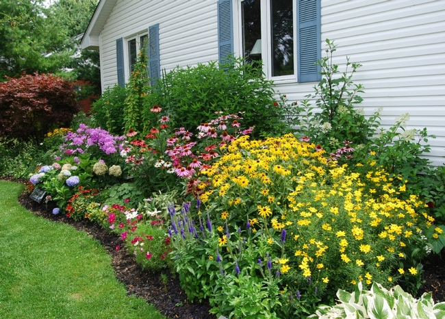 Blog, imagine a garden 4
