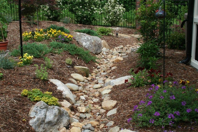 Blog, front yard with swale