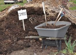 Compost area--find or make one.