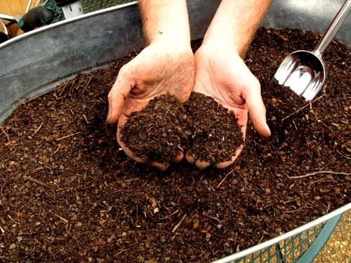 Compost.  'Nuff said!