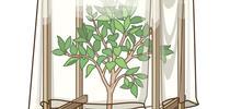 Frost cover option. for Napa Master Gardener Column Blog