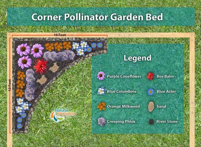 Pollinator Garden Bed (Natural Alternative)