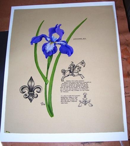 Louisiana iris and fleur-de-lis (Val Webb--WordPress.com)