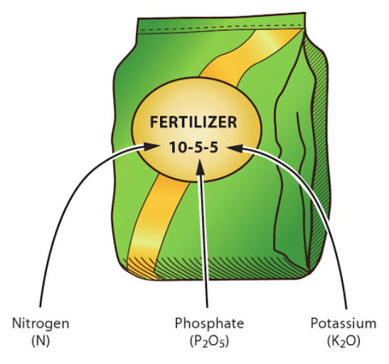 Fertilizer NPK (Blogs-Classifieds)