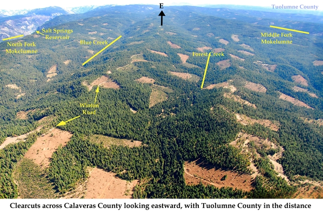 Clear cut California forest areas (Ebbetts Pass Forestry Watch)