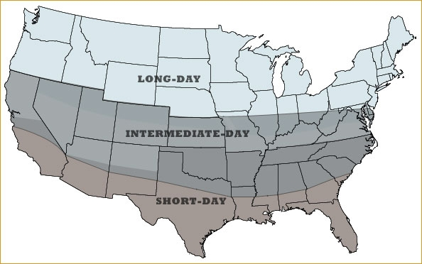 Onion day length map (Constant Contact)