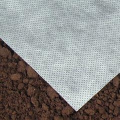 Protect newly planted seed from birds with row cover until germination (Harris seeds)