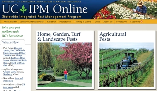UCIPM for pest management options.jpg (UC Cooperative Extension)