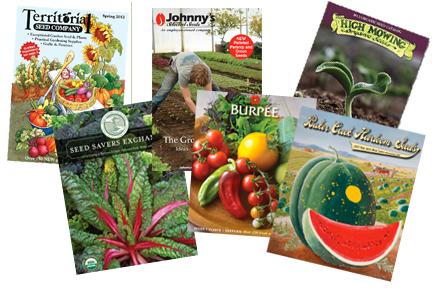 Seed catalogs (plantertomato.typepad.com)