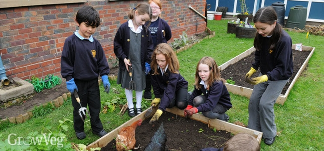 School garden (growveg.com)