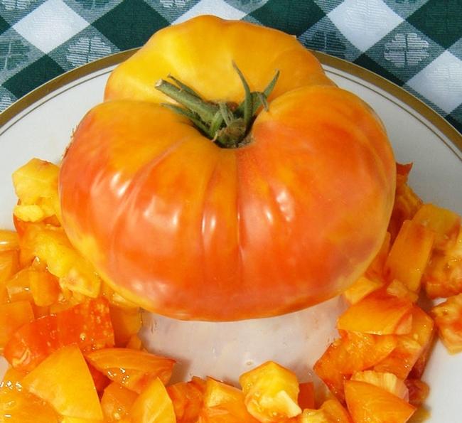 Hess (Tomatofest)