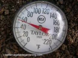 Make sure the soil temp is 70 degrees F or higher.  A kitchen thermometer will do the job. (Vegetable Gardening Made Easy)
