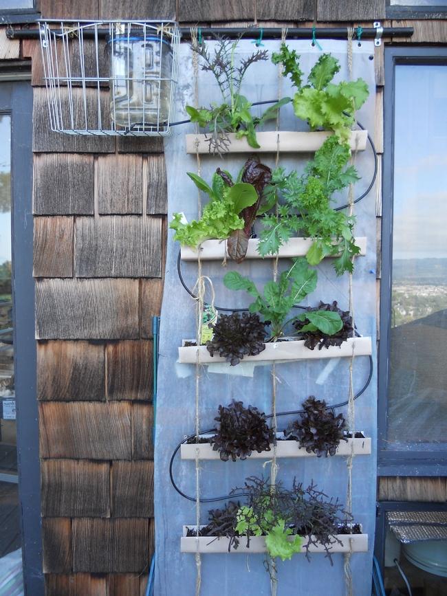 Drip irrigation for vertical planter (Pinterest)