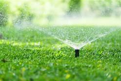 how much water? (valleyviewlandworks)